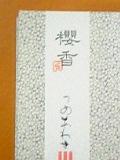 sakuraka.jpg